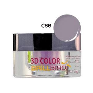 Color de Acrílico C66 BrillBird